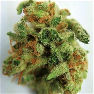 buy weed online overnight