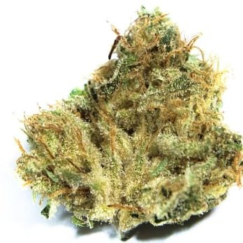 Buy lemon kush online-lemon kush for sale